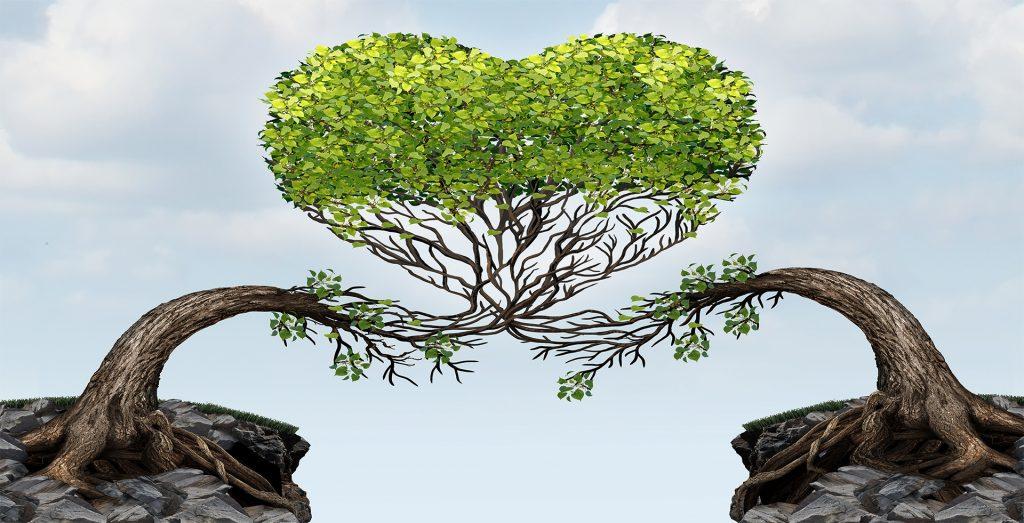 Bild på två kramande träd